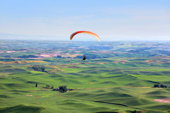 Para glider up in sky Stock Photography