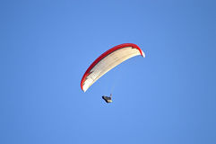 A Para-gliding Competitor Royalty Free Stock Image