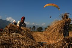 Para-gliding in Nepal Royalty Free Stock Image
