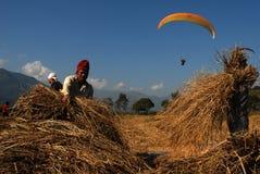 Para-gliding in Nepal royalty free stock image