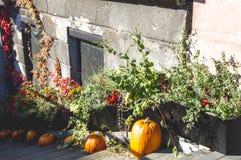 Para Halloween que espera, calabazas en las escaleras fotografía de archivo