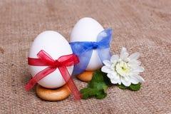 Para jajka w łękach Obrazy Stock