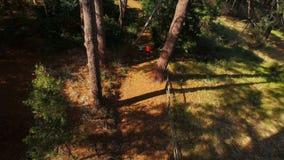Para jogging na lasowej ścieżce zdjęcie wideo