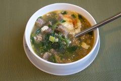 Para la sopa con las hierbas verdes y el yogur búlgaro foto de archivo