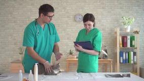Para lekarki sprawdza klinikę, rutynowa inspekcja zwierzę domowe zbiory wideo