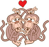 Para małpy w miłości odwszawia each inny Zdjęcia Royalty Free