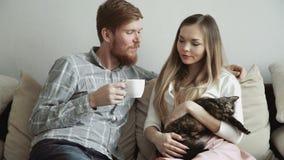 Para muska kota i ogląda tv siedzi na leżanki kanapie w domu, napój herbata od białego herbata setu zdjęcie wideo