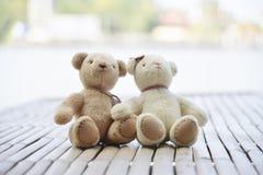 Para niedźwiedź, Amphawa, Tajlandia Obraz Stock