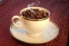 Para o amor do café, feijões de café em um Wedgewoo Fotos de Stock