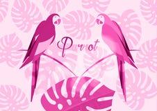 Para papugi, tropikalnego papuziego ptasiego ikona wizerunku projekta wektorowa ilustracyjna menchia monochromatic, egzotyczni pt ilustracji