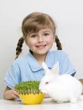 Para Pascua que espera Imagen de archivo libre de regalías