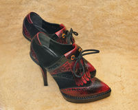 Para piękni buty Obrazy Royalty Free
