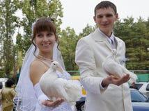 para poślubiająca obraz royalty free