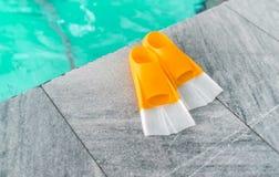 Para pomarańczowi flippers obrazy royalty free
