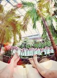 Para relaksuje w tropikalnym środowisku Zdjęcie Royalty Free