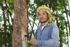 Para rubber farmer Royalty Free Stock Image