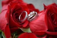 Para siempre amor Fotografía de archivo libre de regalías