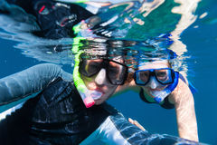 Para snorkeling zdjęcie stock
