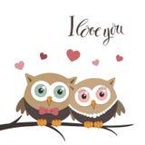 Para sowy w miłości na białej wiadomości i tle Fotografia Royalty Free