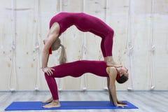 Para sportiga yogakvinnor som gör övning på grå stilfull bakgrund Paryoga poserar royaltyfri fotografi