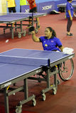 Para table tennis Stock Photography