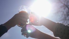 Para tintinear los vidrios de vidrio hermoso con la cerveza y el otro alcohol en el fondo del cielo y el elefante con metrajes
