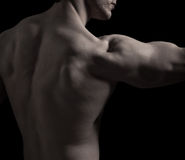 Para trás do homem muscular Foto de Stock Royalty Free