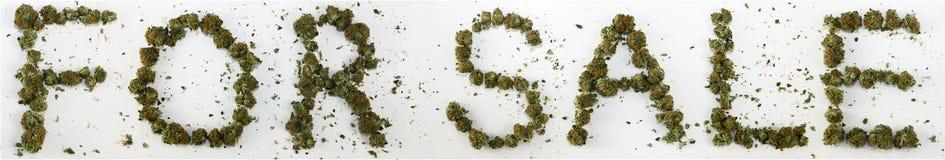 Para a venda soletrada com marijuana Imagem de Stock