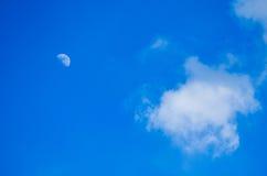 Para ver o céu claro Fotografia de Stock Royalty Free