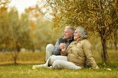 Para w jesień parku Zdjęcia Royalty Free