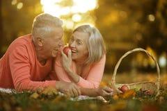 Para w jesień parku Zdjęcie Royalty Free
