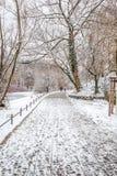 Para w miłości chodzi w śniegu Obraz Stock
