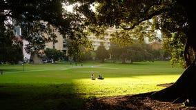 Para w nasłonecznionej haliźnie cieszy się przerwę przy domena parkiem obraz royalty free
