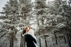Para w sosnowym lesie Zdjęcia Royalty Free