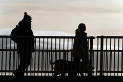 Para w sylwetki odprowadzenia psie Fotografia Royalty Free
