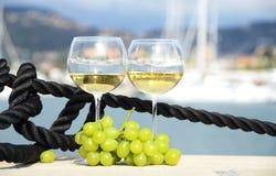 Para wineglasses i winogrona Obraz Royalty Free