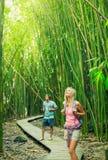 Para wycieczkuje przez bambusowego lasu Zdjęcie Royalty Free
