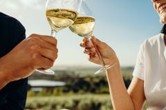 para wznosi toast winem obrazy stock