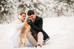 Para z psem w zima lesie Zdjęcia Royalty Free