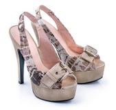 Para zebry kobiety buty Obraz Royalty Free