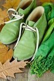 Para zieleni rzemienni buty, szalik i kolorów żółtych liście, obrazy stock