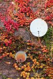 Parabolic antennas on a wall Stock Images