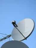 Parabolische Antenne (antenne), Satellitengondelstiel, Kontrollturm Lizenzfreie Stockfotografie