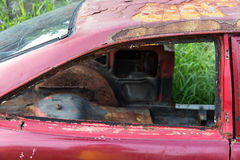 Parabrezza dell'automobile arrugginita abbandonata Immagine Stock Libera da Diritti