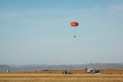 Paracadute durante il raccolto della patata Fotografia Stock Libera da Diritti