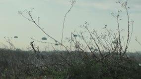Paracaidistas almacen de metraje de vídeo