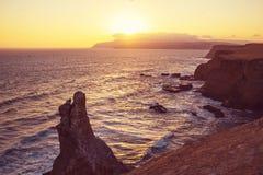 Paracas 免版税图库摄影