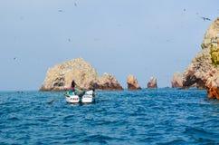 PARACAS, PERU - 9. JUNI 2013: Fischer, welche die Fischernetze mit dem Fang des Tages anheben Lizenzfreie Stockfotos