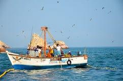 PARACAS, PERU - 9. JUNI 2013: Fischer, welche die Fischernetze mit dem Fang des Tages anheben Lizenzfreie Stockfotografie