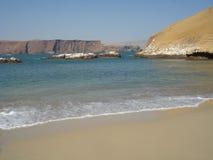 Paracas - Pisco - Перу Стоковые Фото